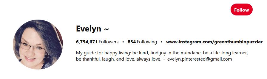 Evelyn Pinterest Influencers